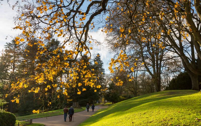 autumn-colours-walkers-lacey-3000-1875