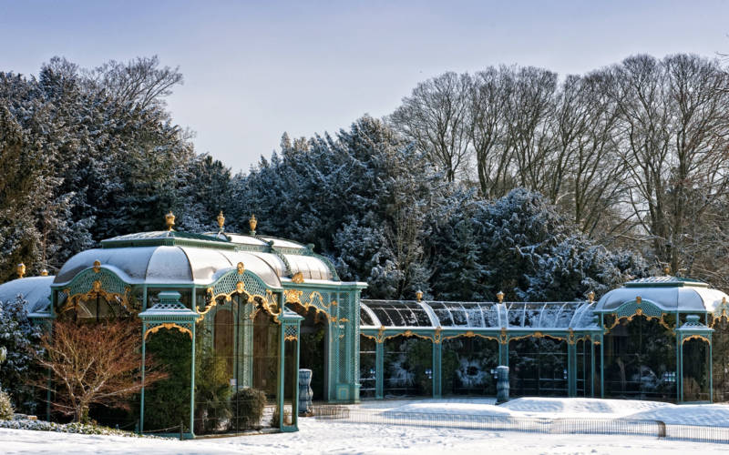 Aviary in winter