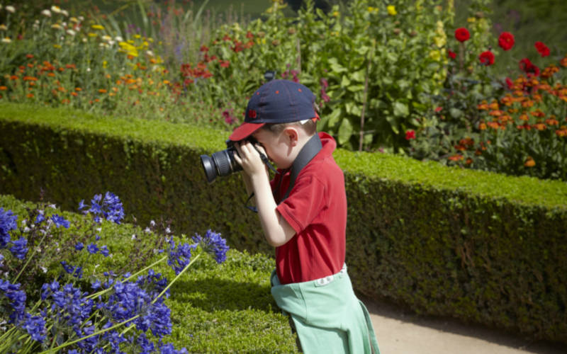 Child taking photo of gardens at National property
