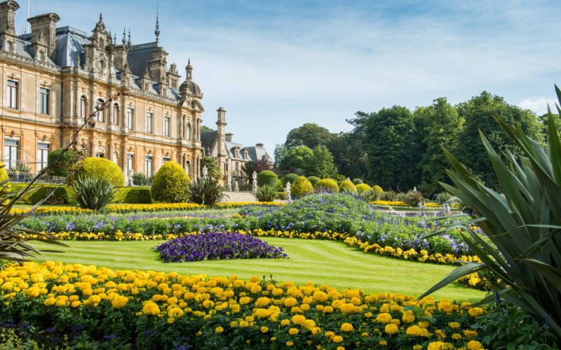 Bedding on the Parterre at Waddesdon Manor