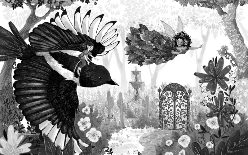 Magical Kingdom of Birds by Anne Booth