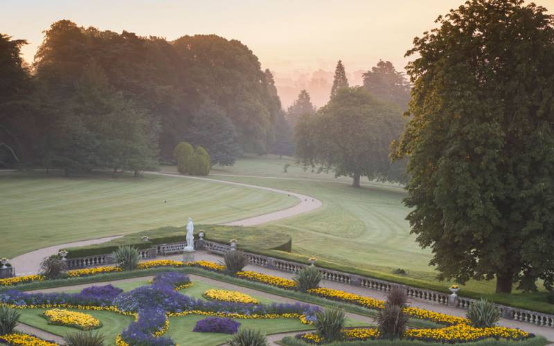 Parterre at dawn
