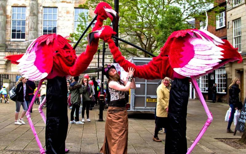 Artemis-Flamingos-duo-with-handler-summer-fest-1000-625