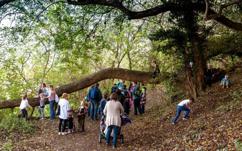 Autumn, families-climbing-autumn-trees-bebb-3000-1875