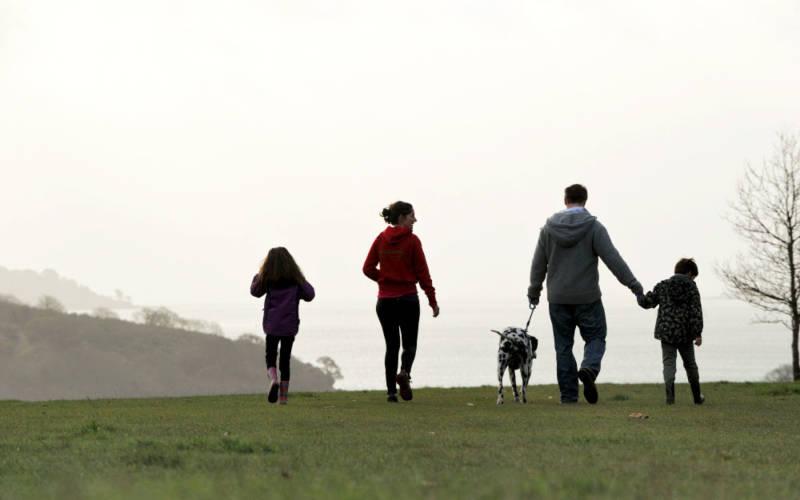 family-dog-walking-1000-625