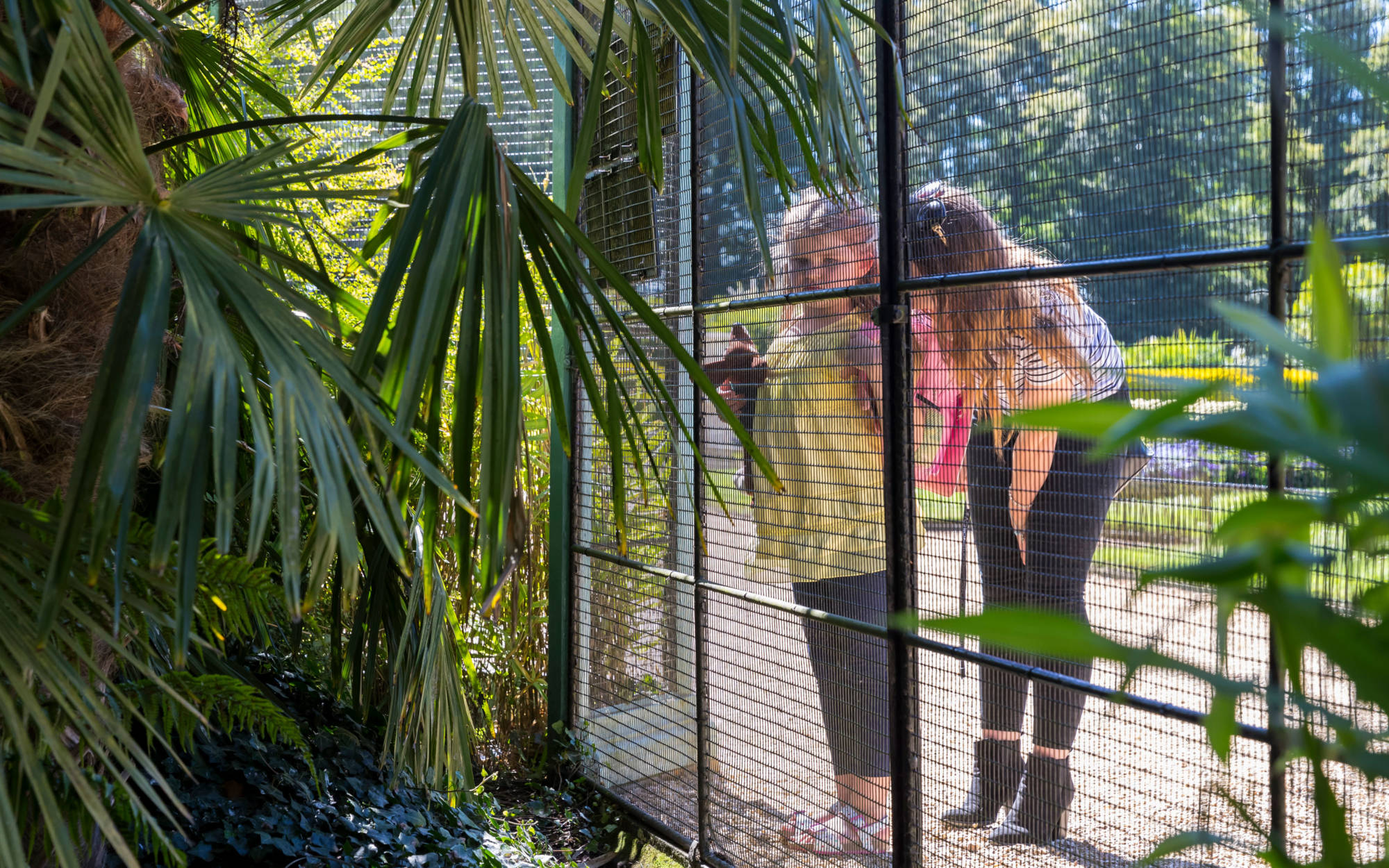 Visitors at the Aviary