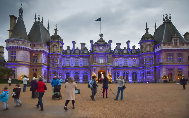 Purple Christmas light projection 2015