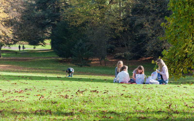 Family enjoying a picnic in the grounds