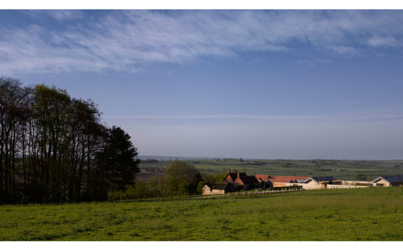The Windmill Hill landscape
