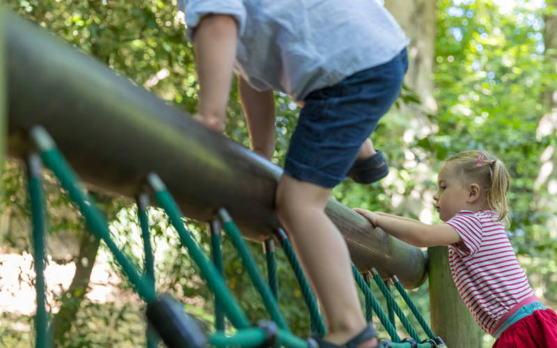 young visitors climbing in the woodland playground