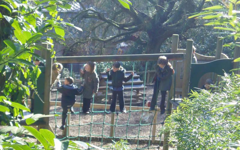 families-woodland-playground-2000-1250-B-purnell