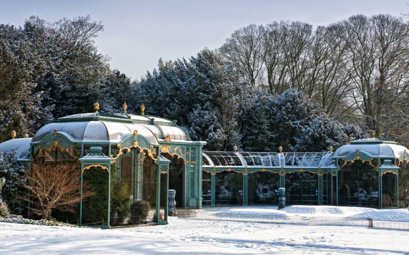 Snowy Aviary in winter
