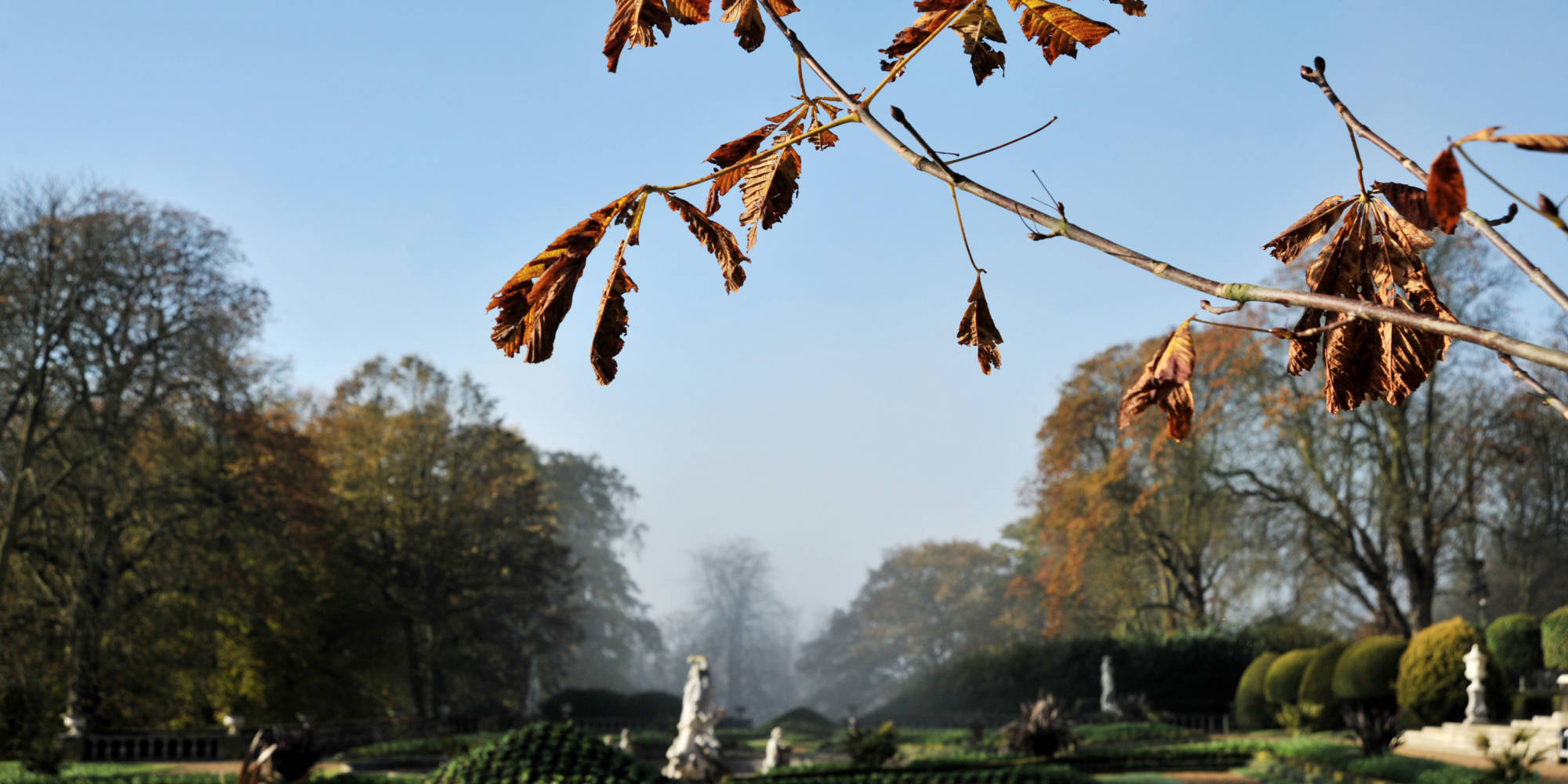 Autumnal parterre