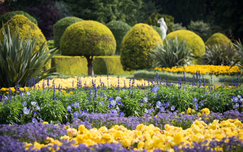yellow-blue-parterre-3000-1875