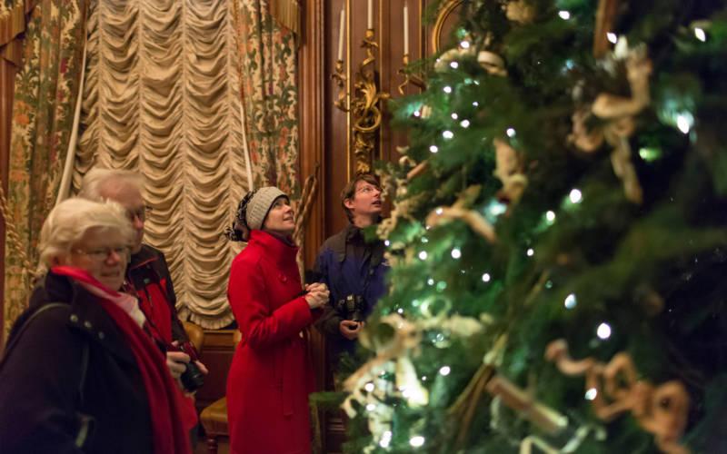house christmas tree visitors