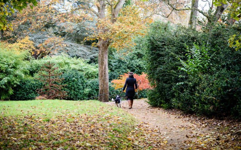 Lady enjoying walk with her dog in the grounds of Waddesdon Manor in Buckinghamshire