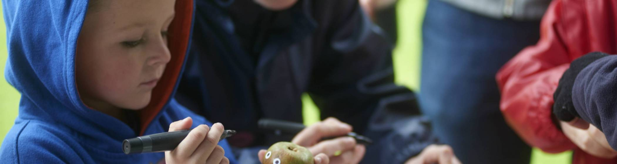 Children taking part in crafts with organic materials at a National Trust property