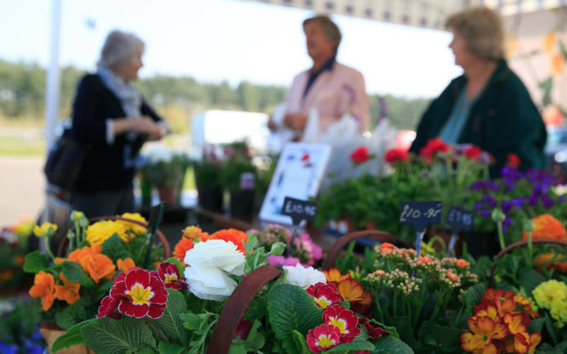 Flowers for sale at the Artisan Food Market