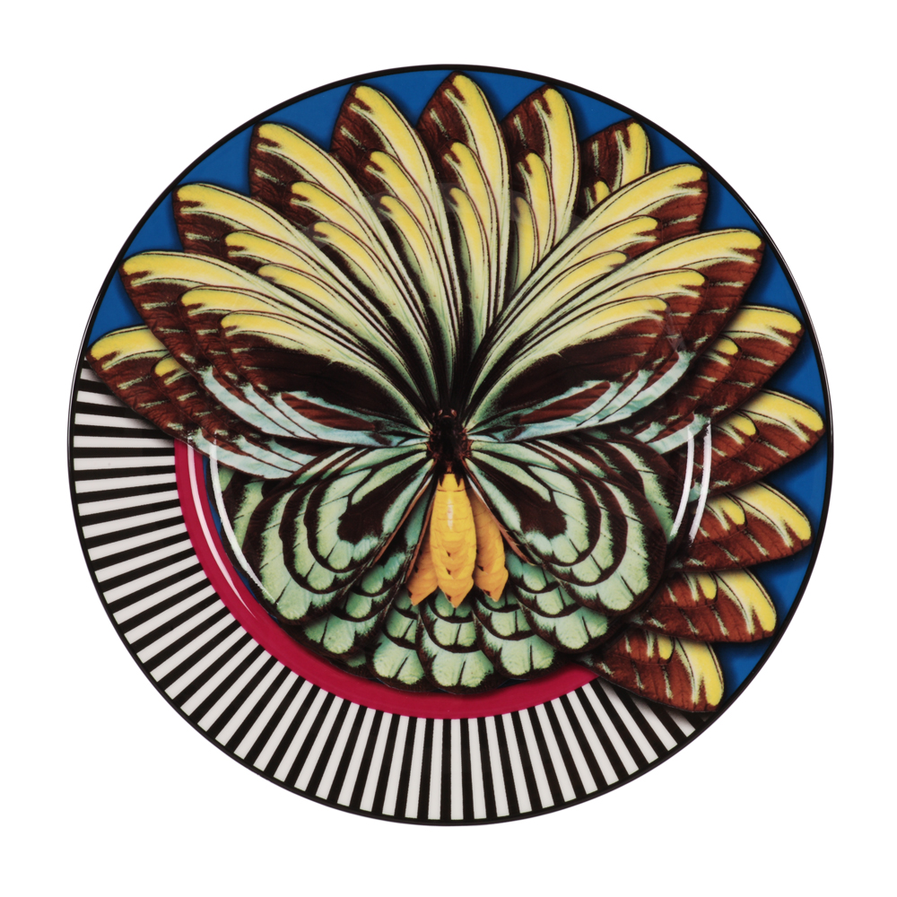 shop-gifts-creatures-creations-homeware-mary-katrantzou-turquoise-plate-1000-1000