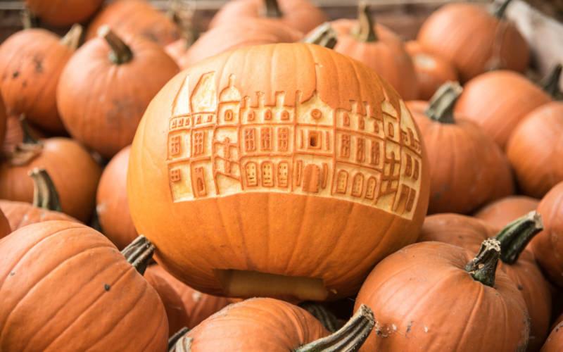 Pumpkins at Waddesdon