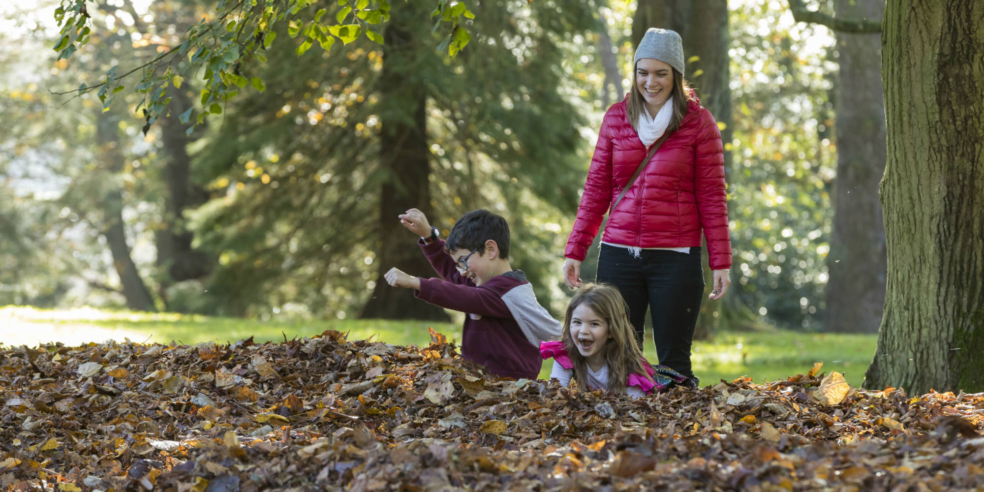 Children playing in autumn leaves at Waddesdon