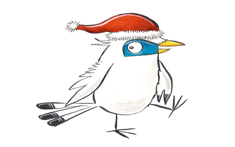 Waddesdon's mascot mimi the mynah wearing a christmas hat