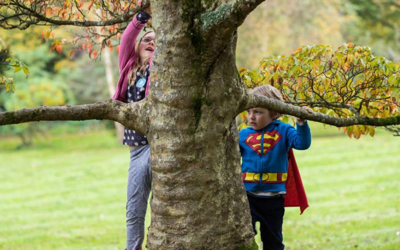 Children-climbing-trees-superhero-Chris-Lacey-3000x1875