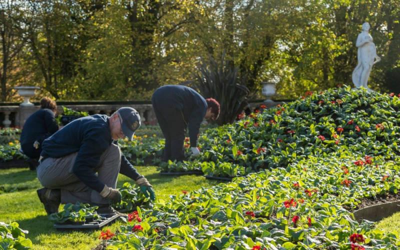 Gardeners at work