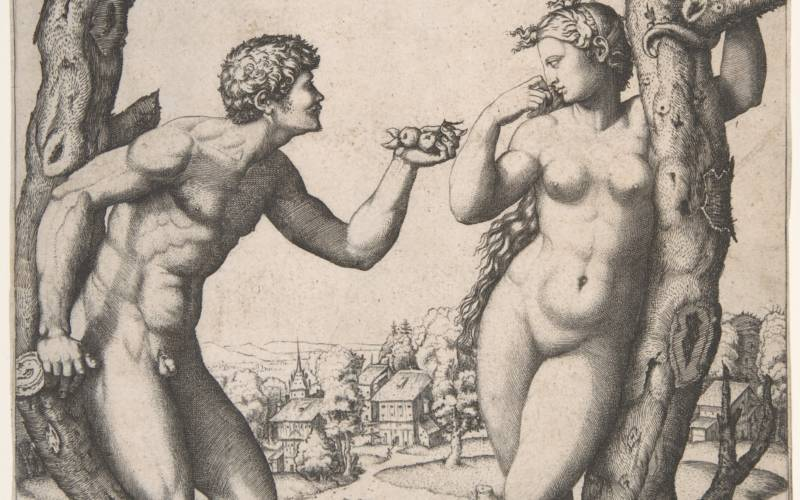 Reynolds, Marcantonio Raimondi, Adam and Eve - 3000x1875