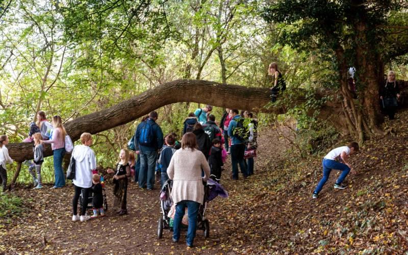 families-climbing-autumn-trees-bebb-3000-1500