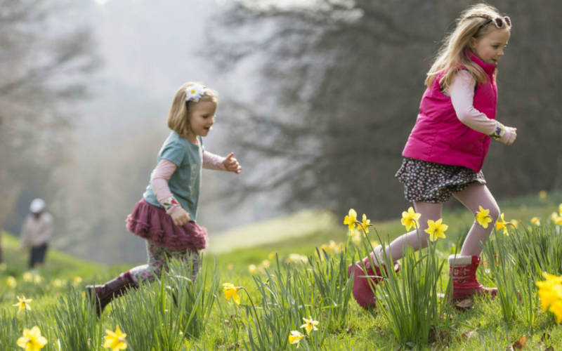 Children running through daffodils