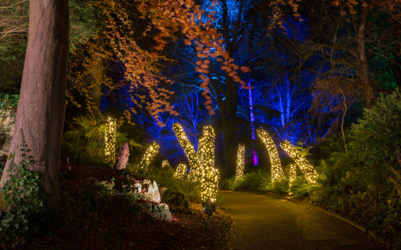 Aviary-gardens-light-trail-Christmas-at-Waddesdon-Manor-©-National-Trust-Waddesdon-Manor.-Hugh-Mothersole-1