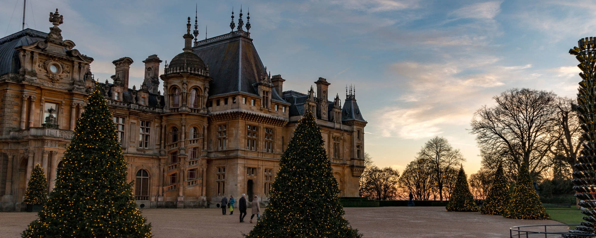 The Manor and Christmas trees