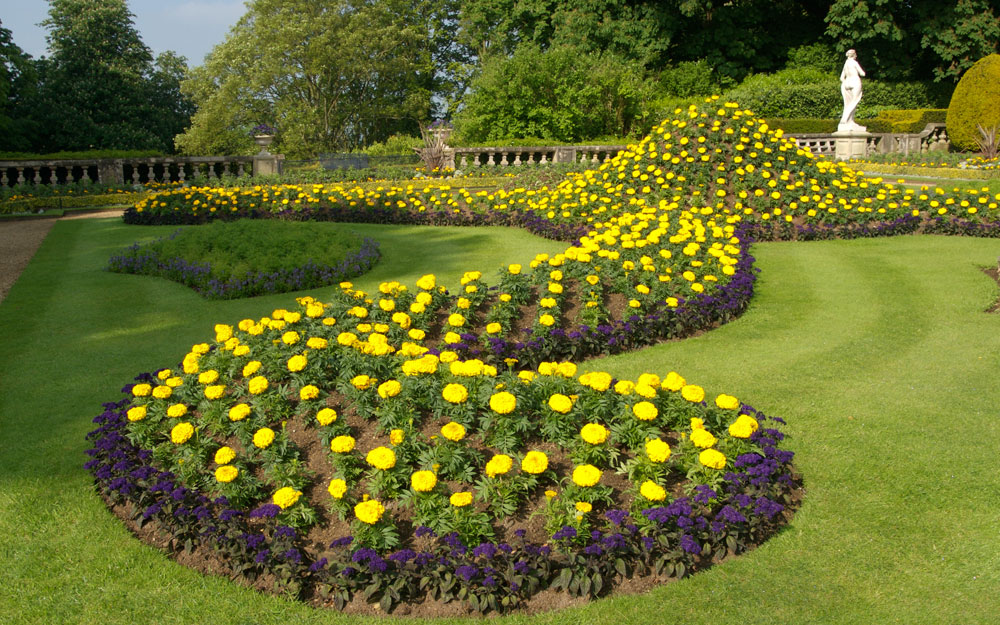 Yellow ribbon bedding