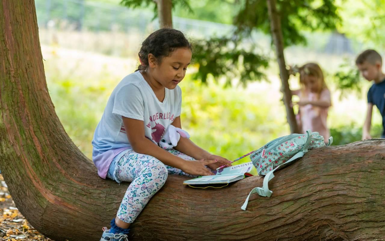Girl sat on a tree trunk doing an activity