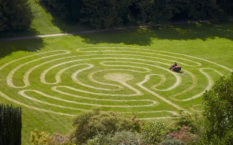 Mowed grass maze