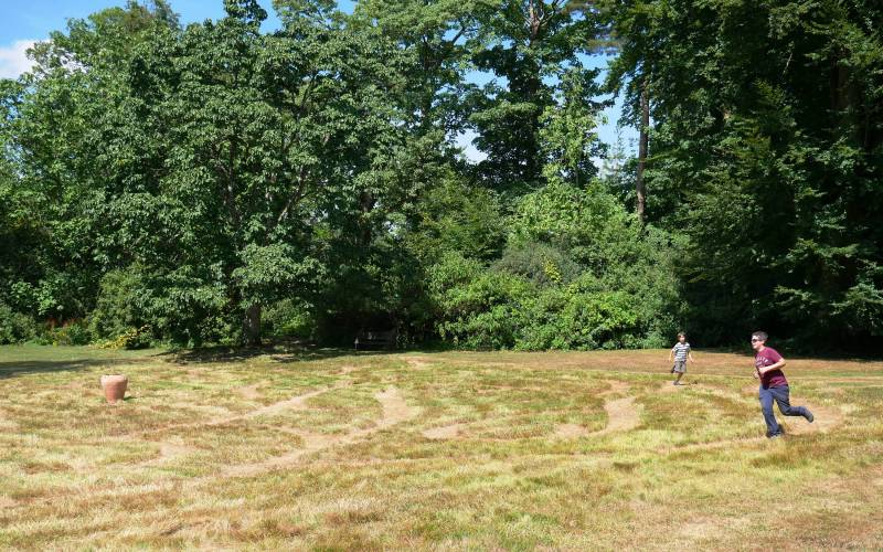 Visitors enjoying a mowed maze