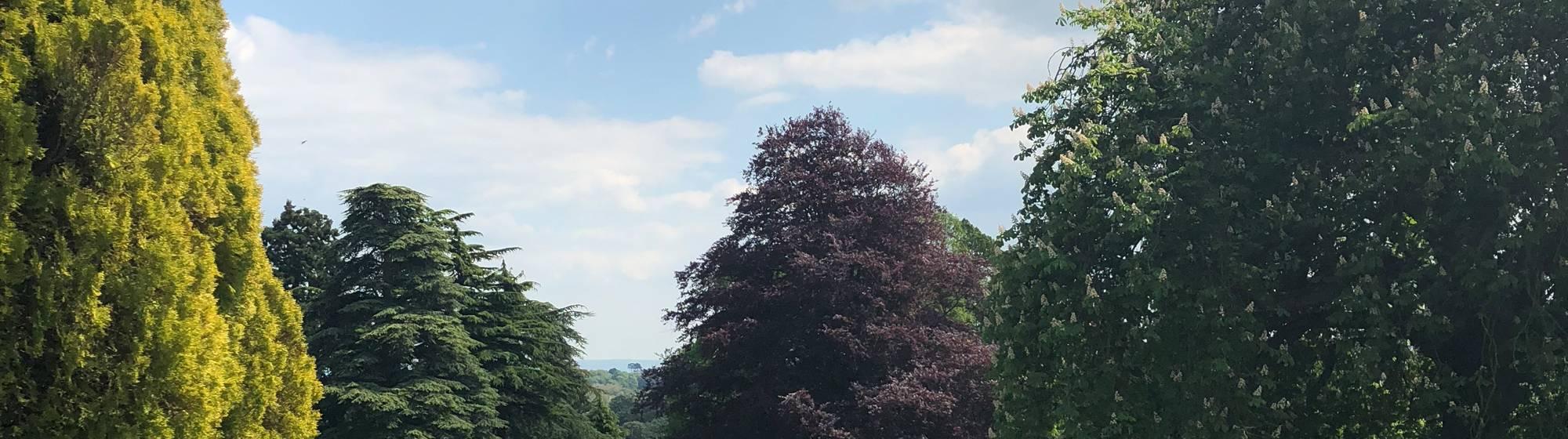 Gardens at Waddesdon
