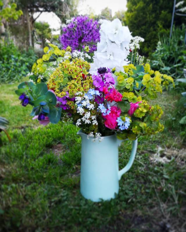 A jug full of colourful flowers
