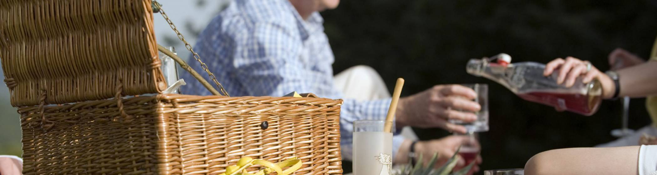 Visitors enjoying a picnic from a wicker hamper