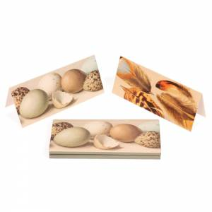 Notecards with an eggshell design by Eliot Hodgkin