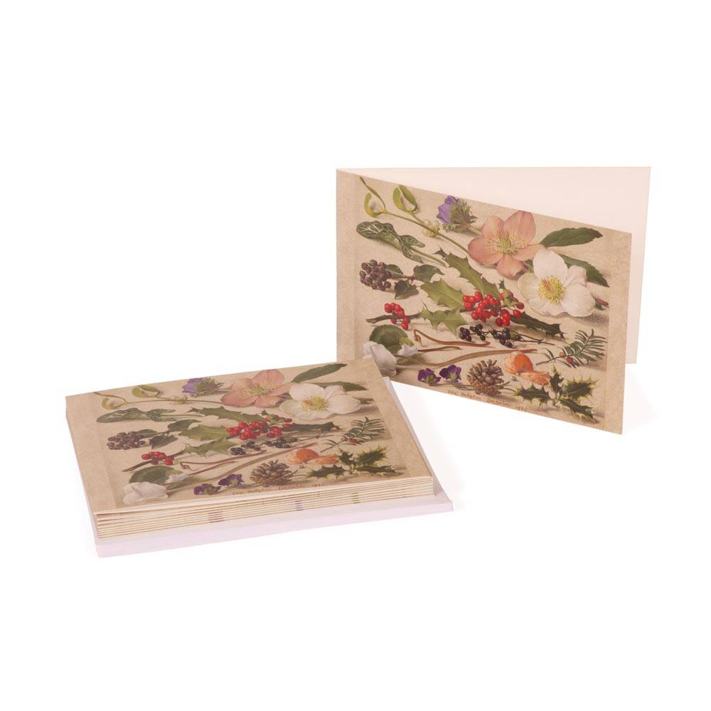 Christmas cards with designs by Eliot Hodgkin
