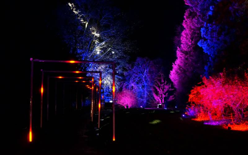 Aviary-gardens-light-trail-Christmas-at-Waddesdon-Manor-Yes-Events-Ltd-1000-625