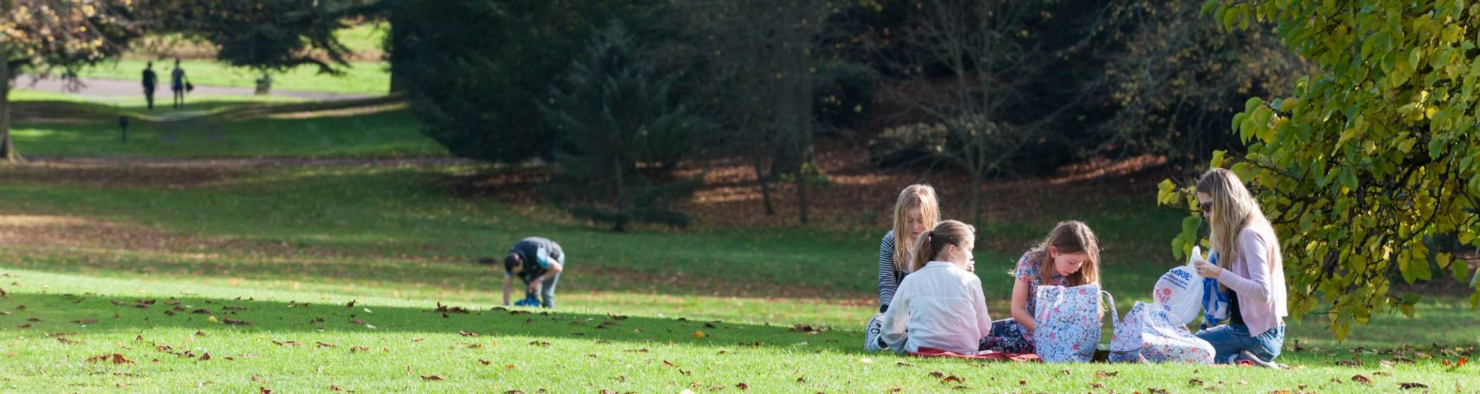 A family autumnal picnic
