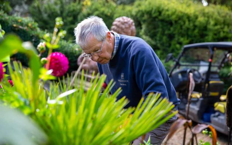Volunteer-with-us-gardening-4