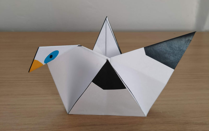 Origami-Mimi-bird-crafts-800-500