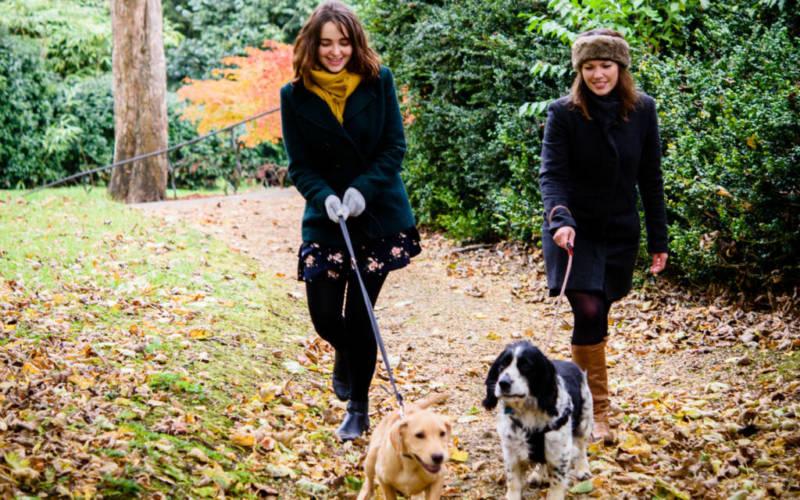 Hygge-walks-dogs-cumberbatch-3000x1875-4-1024x640
